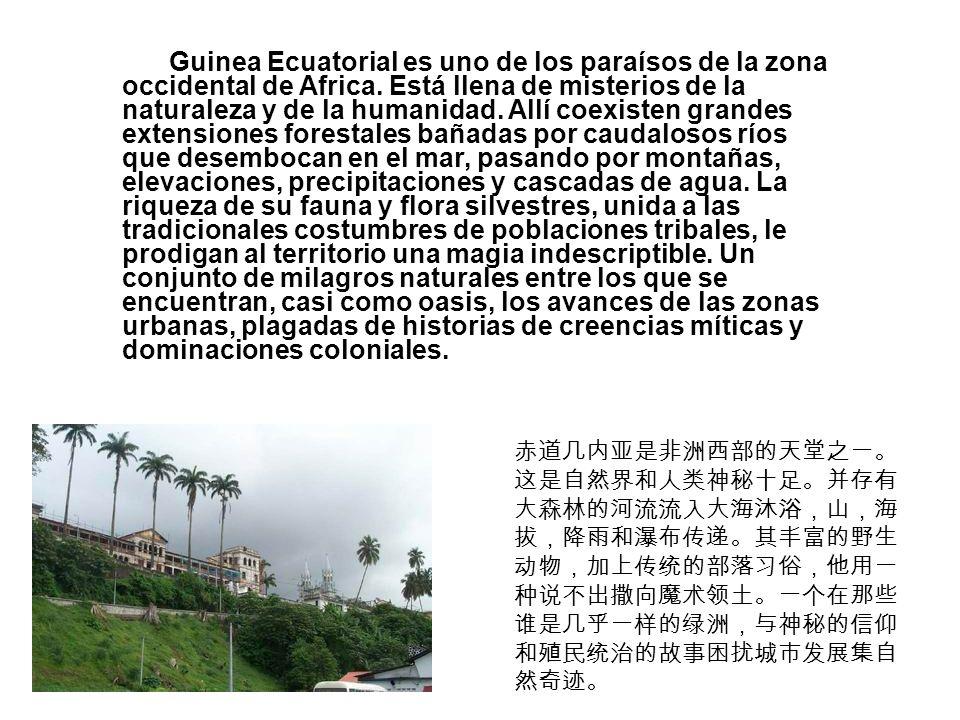 Guinea Ecuatorial es uno de los paraísos de la zona occidental de Africa. Está llena de misterios de la naturaleza y de la humanidad. Allí coexisten g