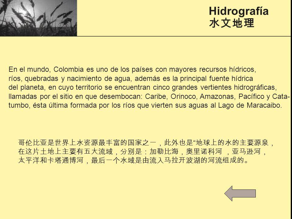 Los recursos Colombia abunda en los recursos naturales,los principales minerales son el carbón, el petróleo y la esmeralda.