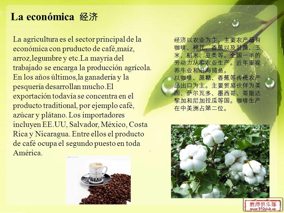 La económica La agricultura es el sector principal de la económica con pruducto de café,maíz, arroz,legumbre y etc.La mayría del trabajado se encarga la producción agrícola.