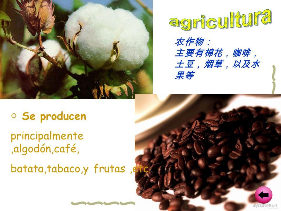 Se producen principalmente,algodón,café, batata,tabaco,y frutas,etc