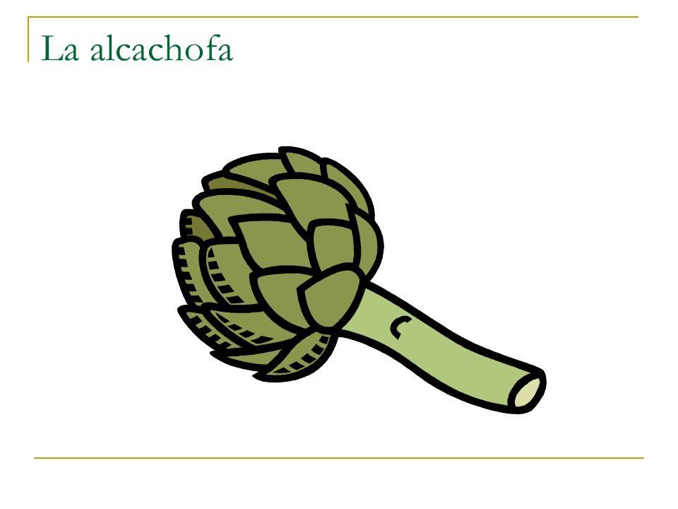 La alcachofa