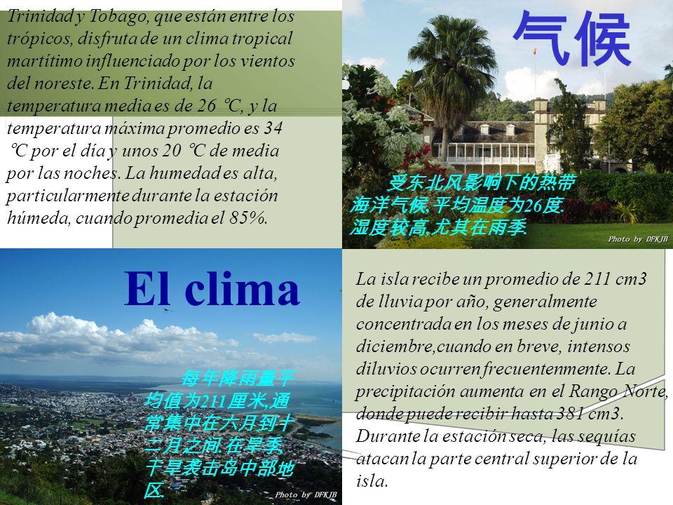 El clima La isla recibe un promedio de 211 cm3 de lluvia por año, generalmente concentrada en los meses de junio a diciembre,cuando en breve, intensos
