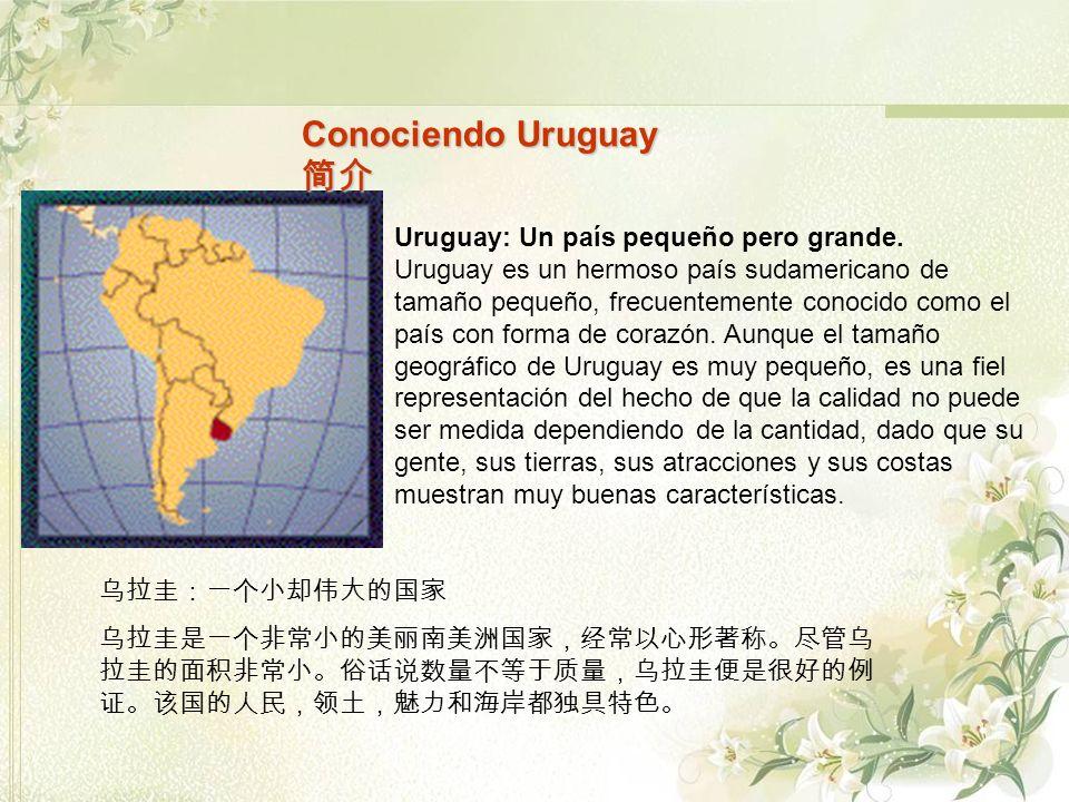 Conociendo Uruguay Conociendo Uruguay Uruguay: Un país pequeño pero grande. Uruguay es un hermoso país sudamericano de tamaño pequeño, frecuentemente