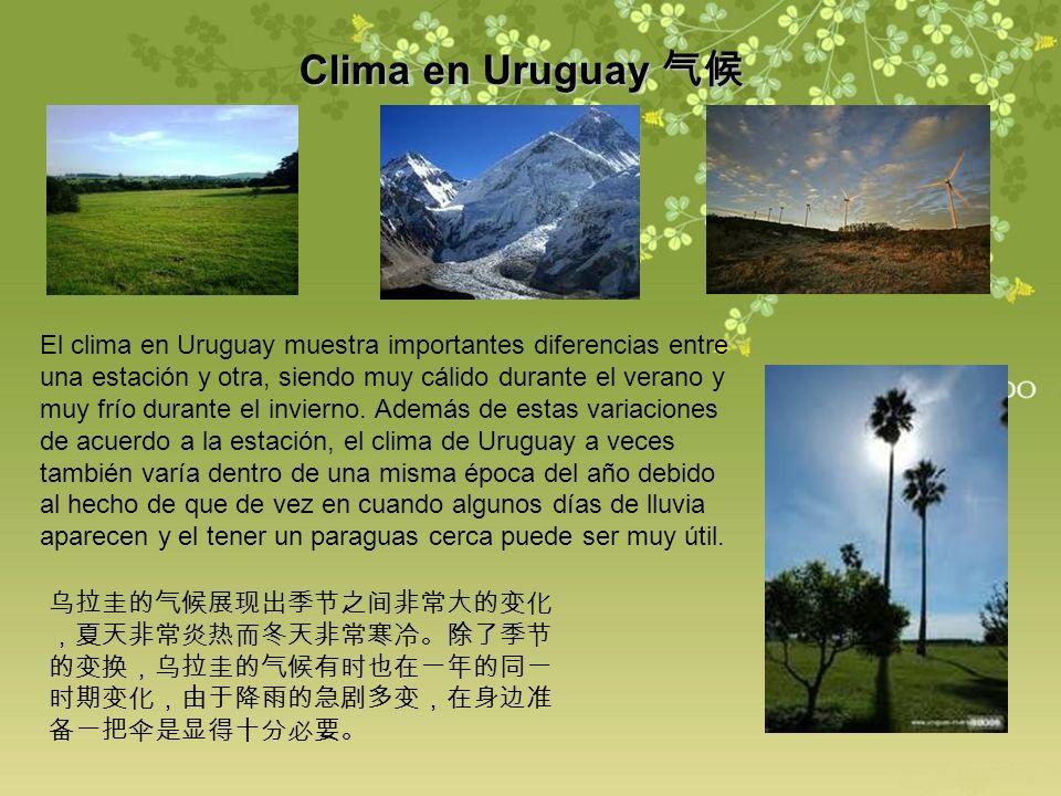 Clima en Uruguay Clima en Uruguay El clima en Uruguay muestra importantes diferencias entre una estación y otra, siendo muy cálido durante el verano y
