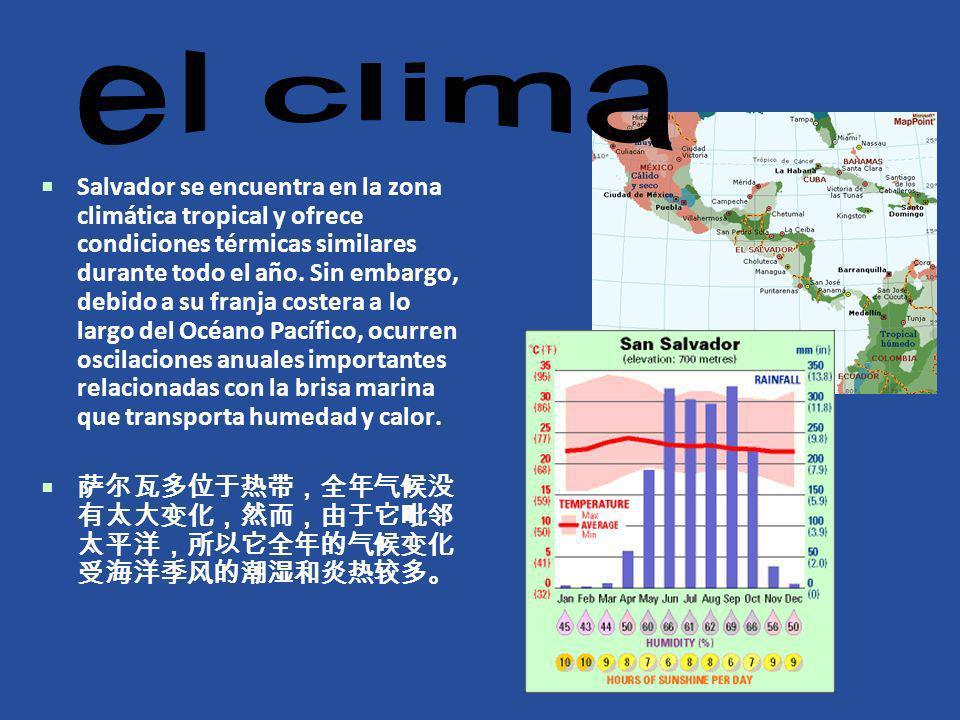Salvador se encuentra en la zona climática tropical y ofrece condiciones térmicas similares durante todo el año. Sin embargo, debido a su franja coste