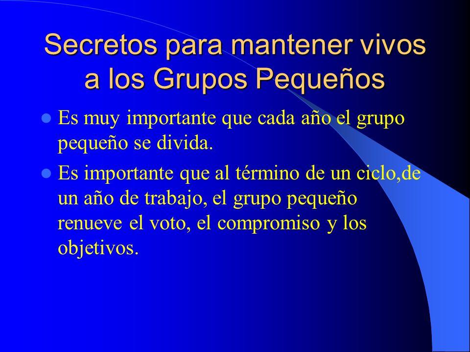 Secretos para mantener vivos a los Grupos Pequeños Es muy importante que cada año el grupo pequeño se divida. Es importante que al término de un ciclo