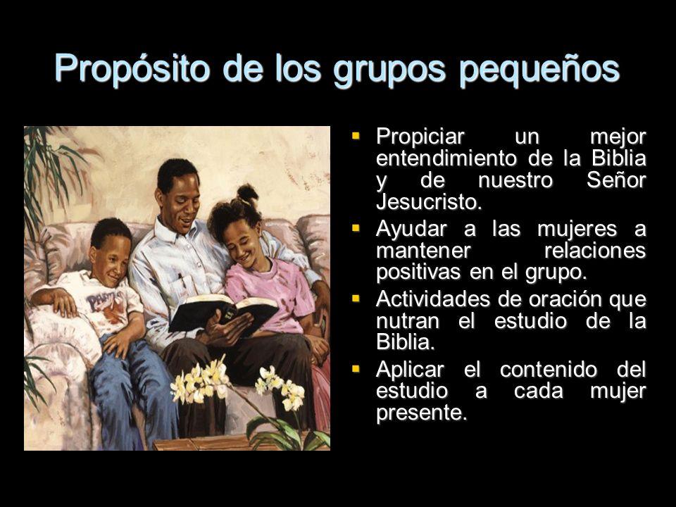 Propósito de los grupos pequeños Propiciar un mejor entendimiento de la Biblia y de nuestro Señor Jesucristo. Propiciar un mejor entendimiento de la B