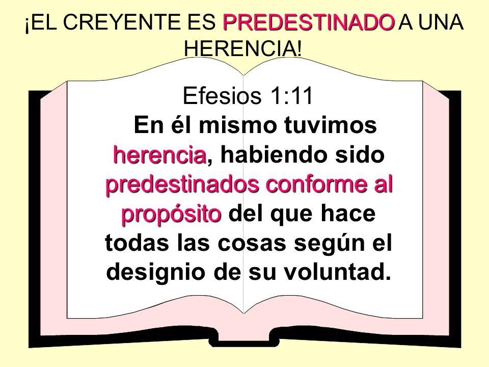 PREDESTINADO ¡EL CREYENTE ES PREDESTINADO A UNA HERENCIA! Efesios 1:11 herencia predestinados conforme al propósito En él mismo tuvimos herencia, habi