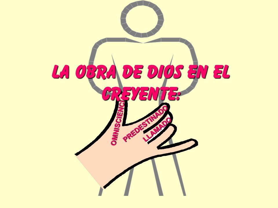OMNISCIENCIA LLAMADO PREDESTINADO LA OBRA DE DIOS EN EL CREYENTE: