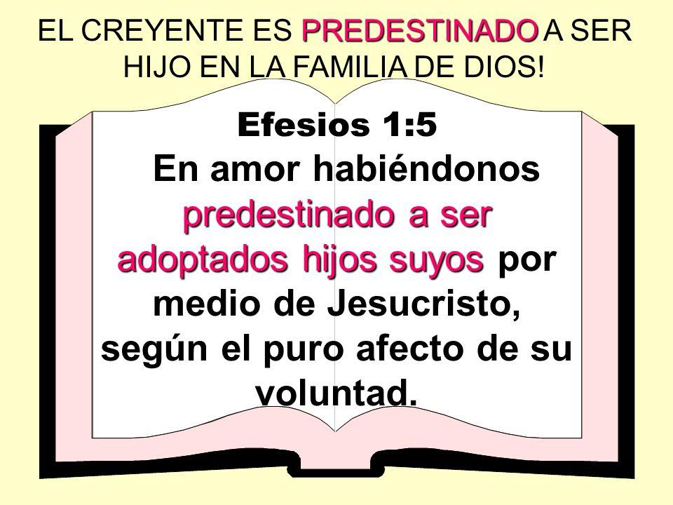 Efesios 1:5 predestinado a ser adoptados hijos suyos En amor habiéndonos predestinado a ser adoptados hijos suyos por medio de Jesucristo, según el pu