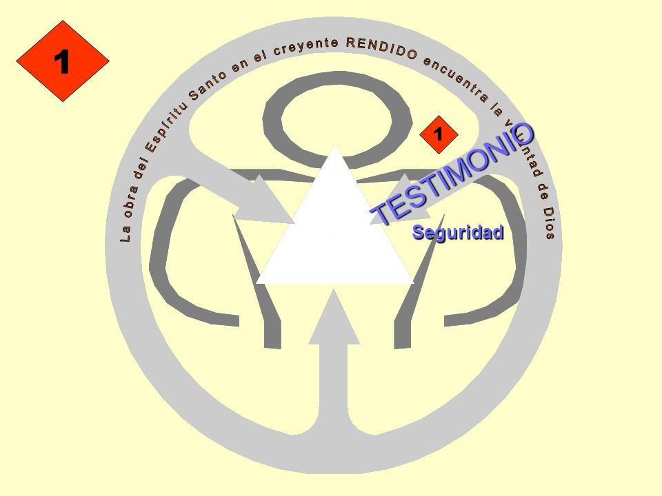 TESTIMONIO 1 1 Seguridad