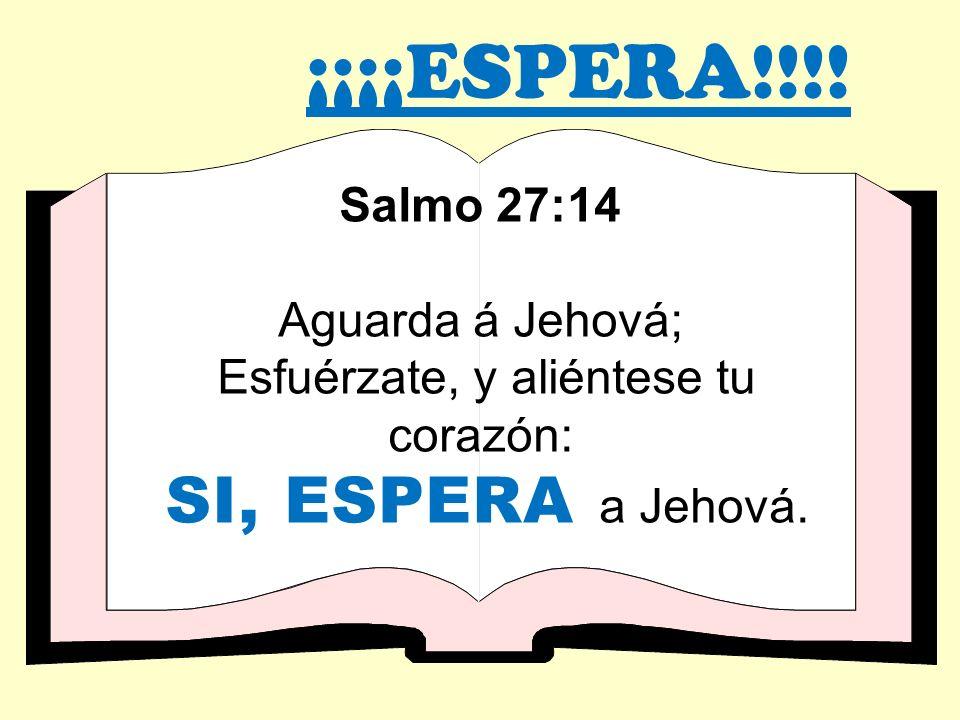¡¡¡¡ESPERA!!!! Salmo 27:14 Aguarda á Jehová; Esfuérzate, y aliéntese tu corazón: SI, ESPERA a Jehová.