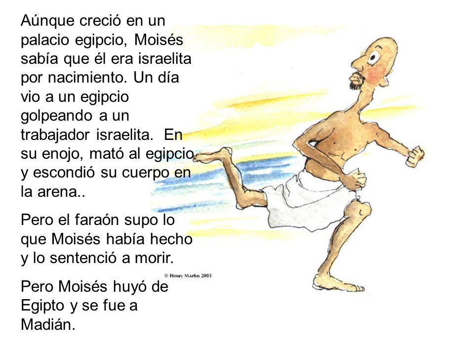 Aúnque creció en un palacio egipcio, Moisés sabía que él era israelita por nacimiento.