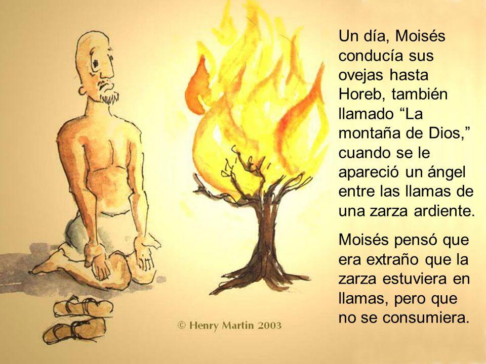 Entonces Dios le habló a Moisés desde la zarza ardiente.