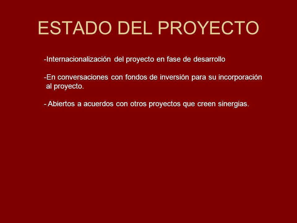 ESTADO DEL PROYECTO -Internacionalización del proyecto en fase de desarrollo -En conversaciones con fondos de inversión para su incorporación al proyecto.