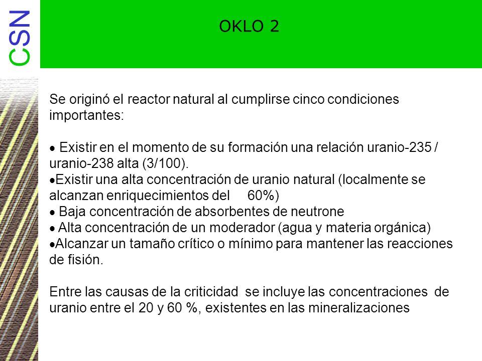 CSN OKLO 3 Investigaciones han demostrado que existen cantidades anormalmente altas de productos de fisión en las zonas donde existió el reactor natural.