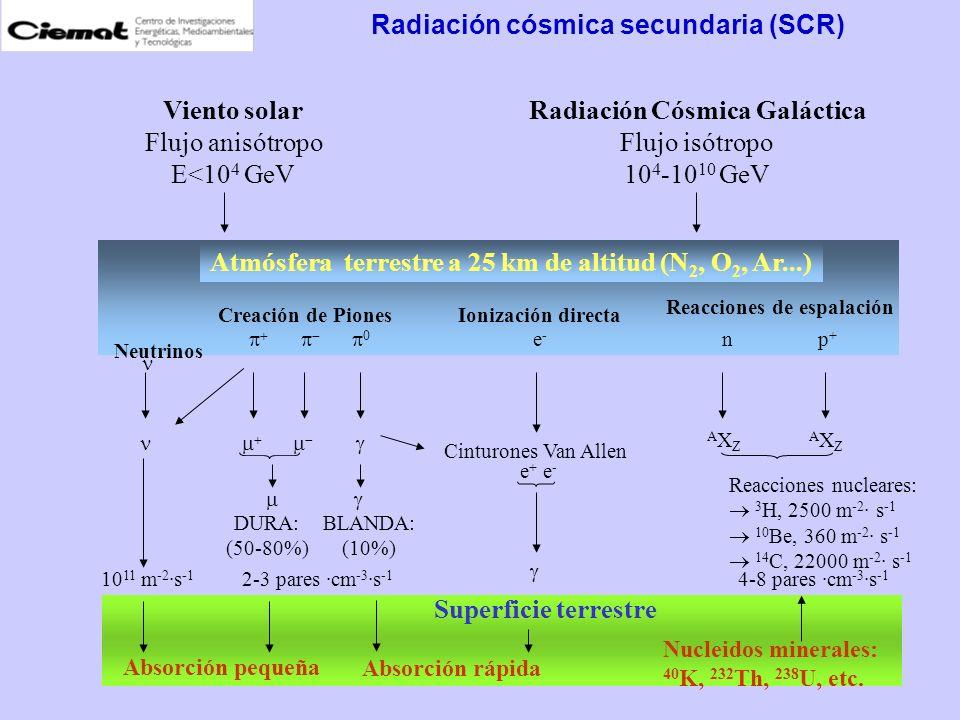 Radiación cósmica secundaria (SCR) Atmósfera terrestre a 25 km de altitud (N 2, O 2, Ar...) Superficie terrestre np+p+ Neutrinos Creación de PionesIon