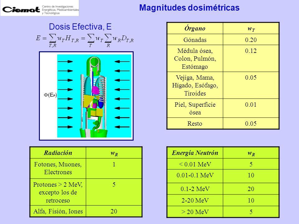 Magnitudes dosimétricas RadiaciónwRwR Fotones, Muones, Electrones 1 Protones > 2 MeV, excepto los de retroceso 5 Alfa, Fisión, Iones20 Energía Neutrón