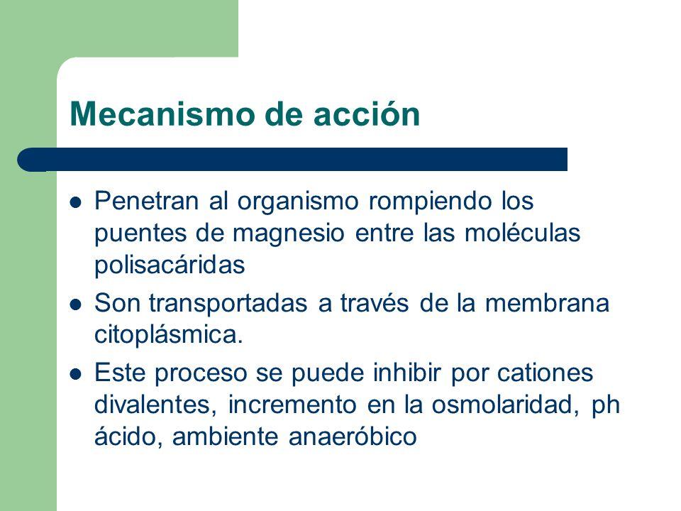 Mecanismo de acción Efecto postantibiótico: – Supresión persistente del crecimiento bacteriano – Duración aproximada 3 horas – Se reduce en ausencia de PMN