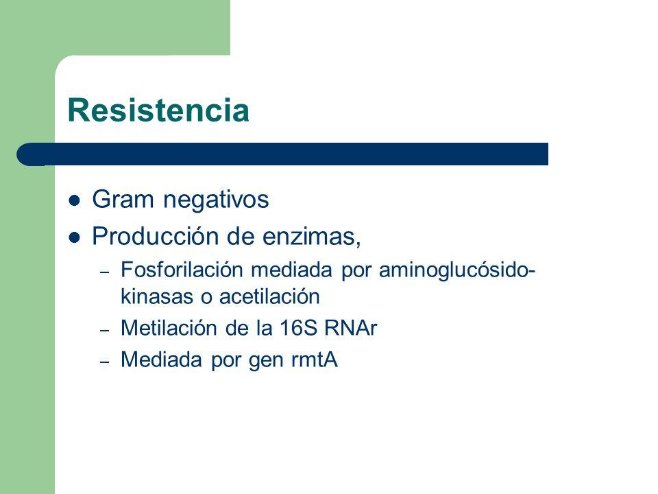 Resistencia Enterococos – Intrínsecamente resistente – CMI de gentamicina 8-64 mcg/ml – Estreptomicina 64-512 mcg/ml – Sinergia con Vancomicina o Penicilina