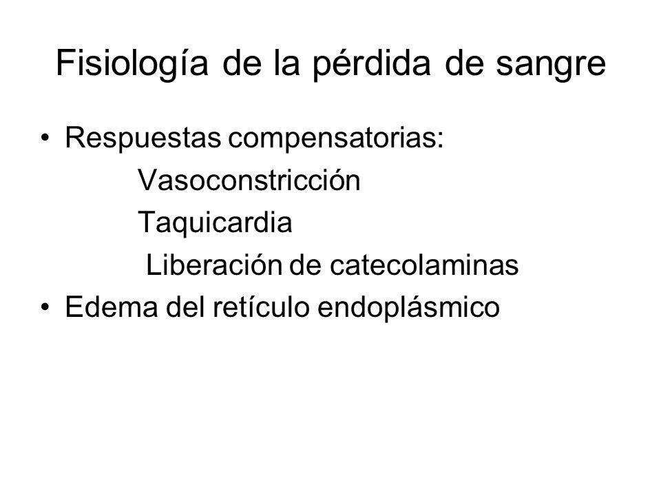 Fisiología de la pérdida de sangre Respuestas compensatorias: Vasoconstricción Taquicardia Liberación de catecolaminas Edema del retículo endoplásmico