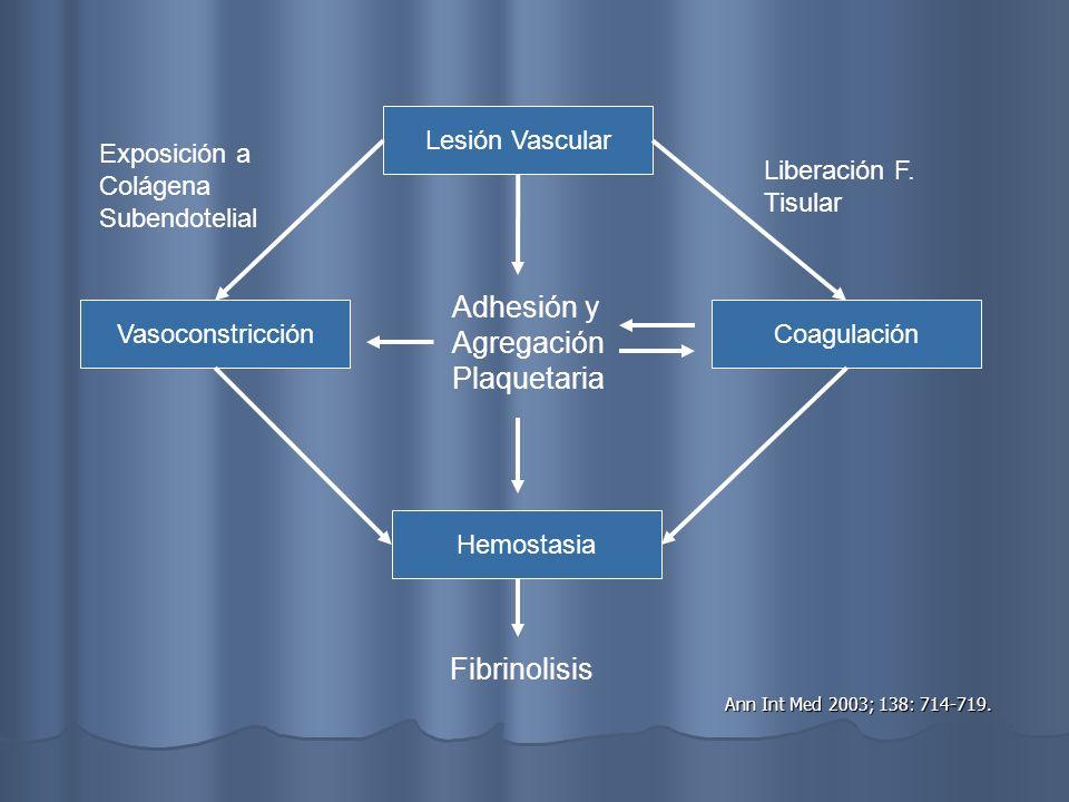 Hemostasia Vasoconstricción Vasoconstricción Reflejo Axonómico Reflejo Axonómico Endotelina Endotelina Agregación Plaquetaria Agregación Plaquetaria Ac.