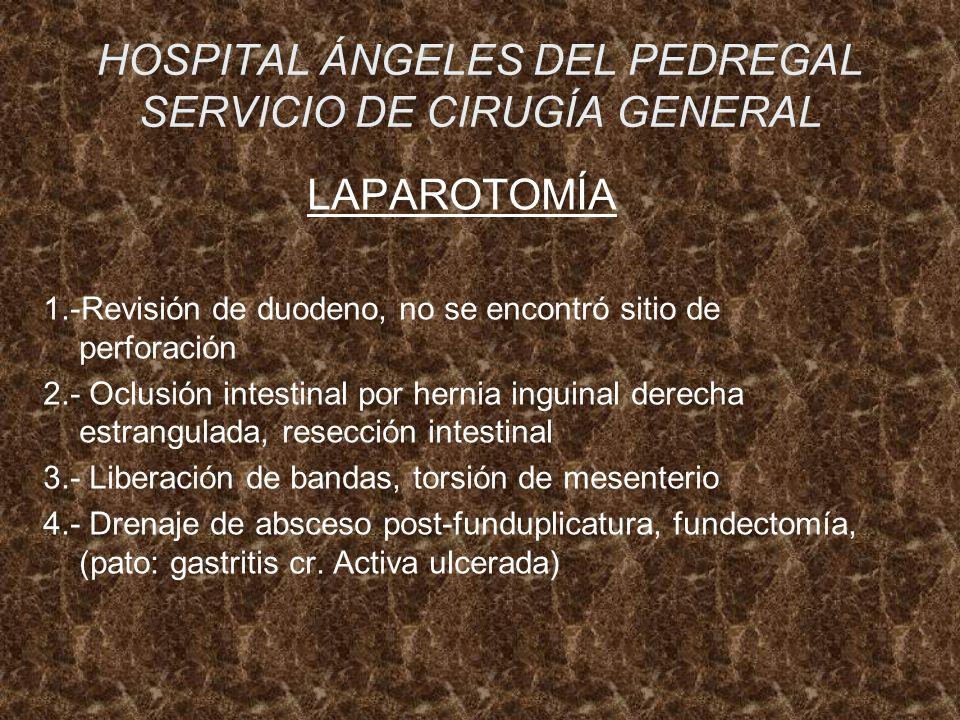 HOSPITAL ÁNGELES DEL PEDREGAL SERVICIO DE CIRUGÍA GENERAL LAPAROTOMÍA 1.-Revisión de duodeno, no se encontró sitio de perforación 2.- Oclusión intesti