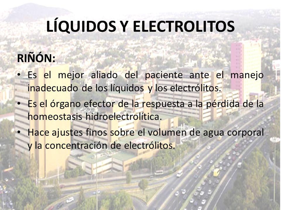LÍQUIDOS Y ELECTROLITOS RIÑÓN: Es el mejor aliado del paciente ante el manejo inadecuado de los líquidos y los electrólitos. Es el órgano efector de l