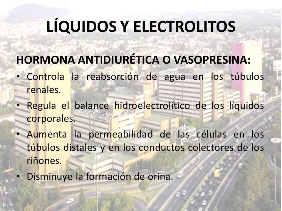 LÍQUIDOS Y ELECTROLITOS HORMONA ANTIDIURÉTICA O VASOPRESINA: Controla la reabsorción de agua en los túbulos renales. Regula el balance hidroelectrolít