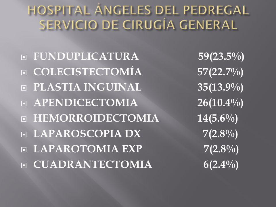 FUNDUPLICATURA 59(23.5%) COLECISTECTOMÍA 57(22.7%) PLASTIA INGUINAL 35(13.9%) APENDICECTOMIA 26(10.4%) HEMORROIDECTOMIA 14(5.6%) LAPAROSCOPIA DX 7(2.8