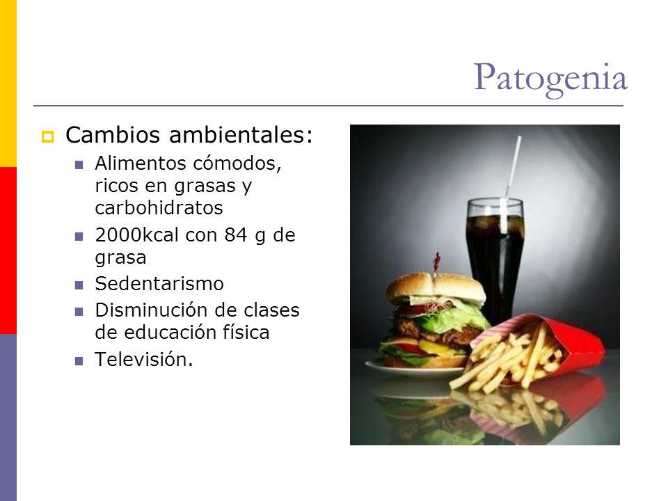 Patogenia Cambios ambientales: Alimentos cómodos, ricos en grasas y carbohidratos 2000kcal con 84 g de grasa Sedentarismo Disminución de clases de edu