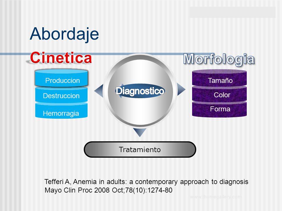 www.themegallery.com Abordaje Tratamiento Produccion Destruccion Hemorragia Tamaño Color Forma Tefferi A, Anemia in adults: a contemporary approach to