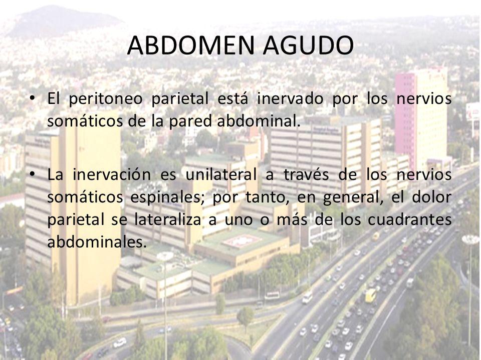 El peritoneo parietal está inervado por los nervios somáticos de la pared abdominal. La inervación es unilateral a través de los nervios somáticos esp
