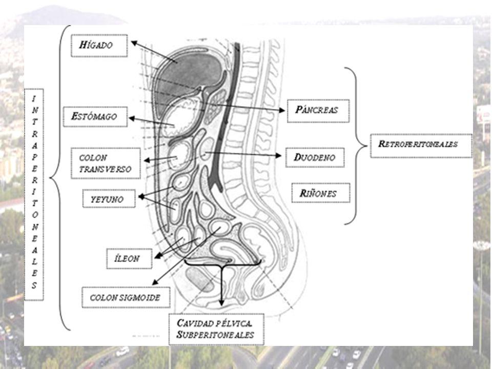 Si el dolor es de tipo cólico intermitente, pensar en causas de distensión, dilatación u obstrucción de vísceras huecas, pero si es cólico continuo, se debe pensar en inflamación o isquemia de vísceras huecas.