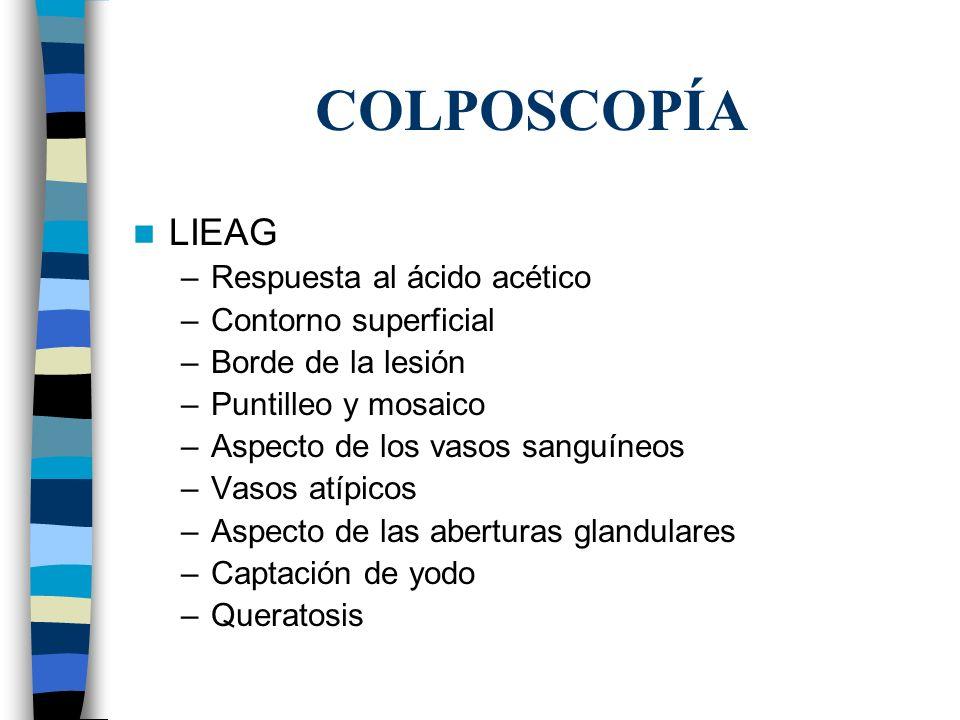 COLPOSCOPÍA LIEAG –Respuesta al ácido acético –Contorno superficial –Borde de la lesión –Puntilleo y mosaico –Aspecto de los vasos sanguíneos –Vasos a