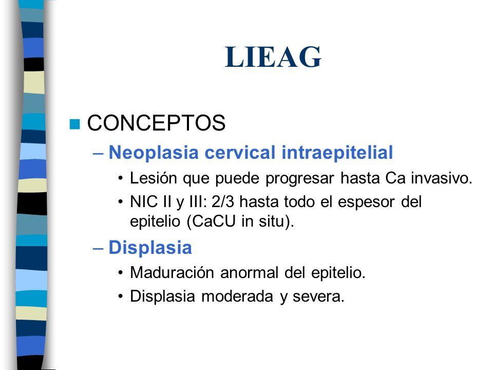 LIEAG Citología reporta HSIL: 70 –75% NIC 2 y 3 1 – 2% Ca invasor NIC INIC IINIC III Regresión60%40%30% Persistencia30%35%48% Progresión a NIC III 10%20%_ Progresión a CaCU <1%5%22%