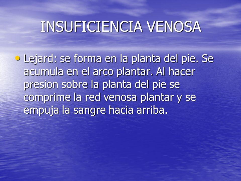 INSUFICIENCIA VENOSA Lejard: se forma en la planta del pie. Se acumula en el arco plantar. Al hacer presion sobre la planta del pie se comprime la red