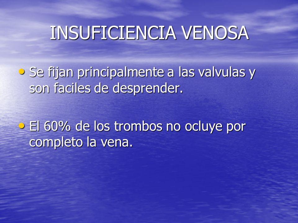 INSUFICIENCIA VENOSA Se fijan principalmente a las valvulas y son faciles de desprender. Se fijan principalmente a las valvulas y son faciles de despr