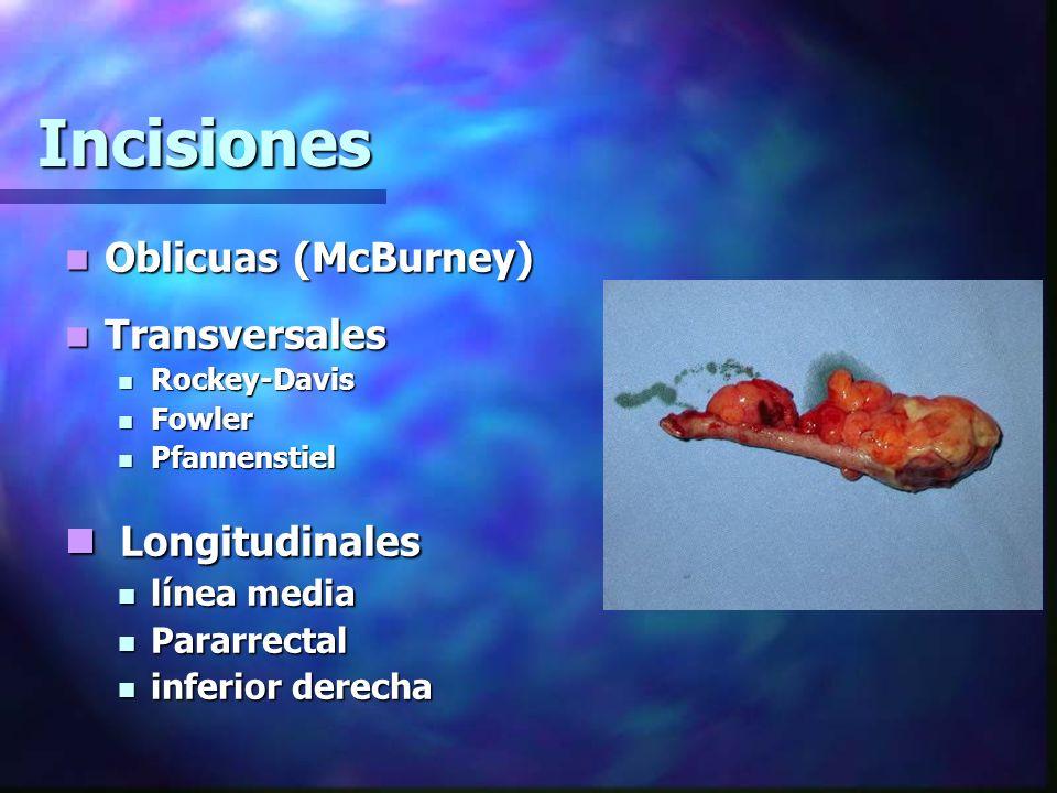 Incisiones Oblicuas (McBurney) Oblicuas (McBurney) Transversales Transversales Rockey-Davis Rockey-Davis Fowler Fowler Pfannenstiel Pfannenstiel Longi