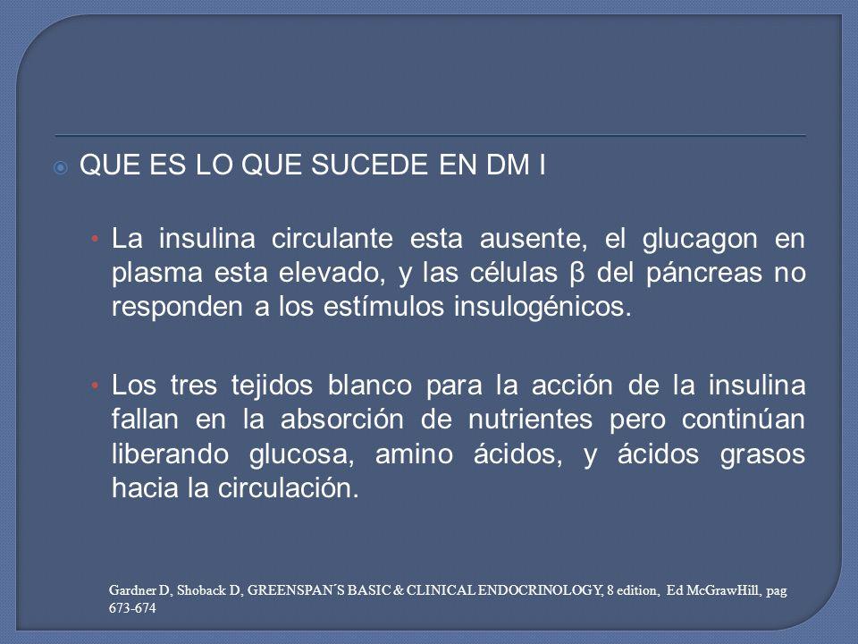 QUE ES LO QUE SUCEDE EN DM I La insulina circulante esta ausente, el glucagon en plasma esta elevado, y las células β del páncreas no responden a los