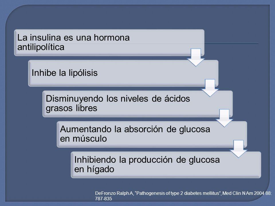 La insulina es una hormona antilipolítica Inhibe la lipólisis Disminuyendo los niveles de ácidos grasos libres Aumentando la absorción de glucosa en m