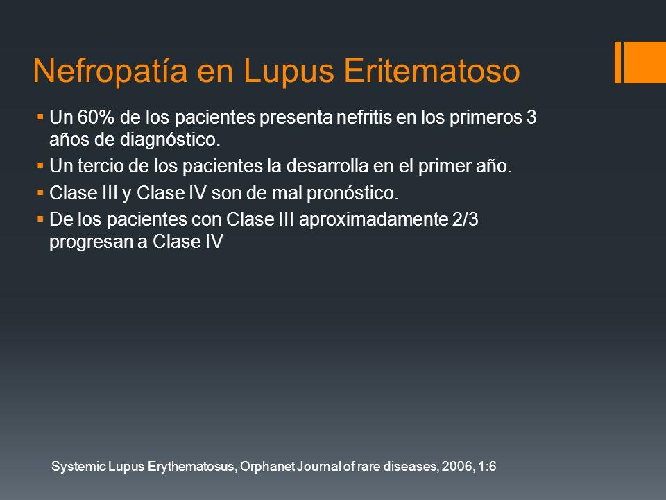 Nefropatía en Lupus Eritematoso Un 60% de los pacientes presenta nefritis en los primeros 3 años de diagnóstico. Un tercio de los pacientes la desarro