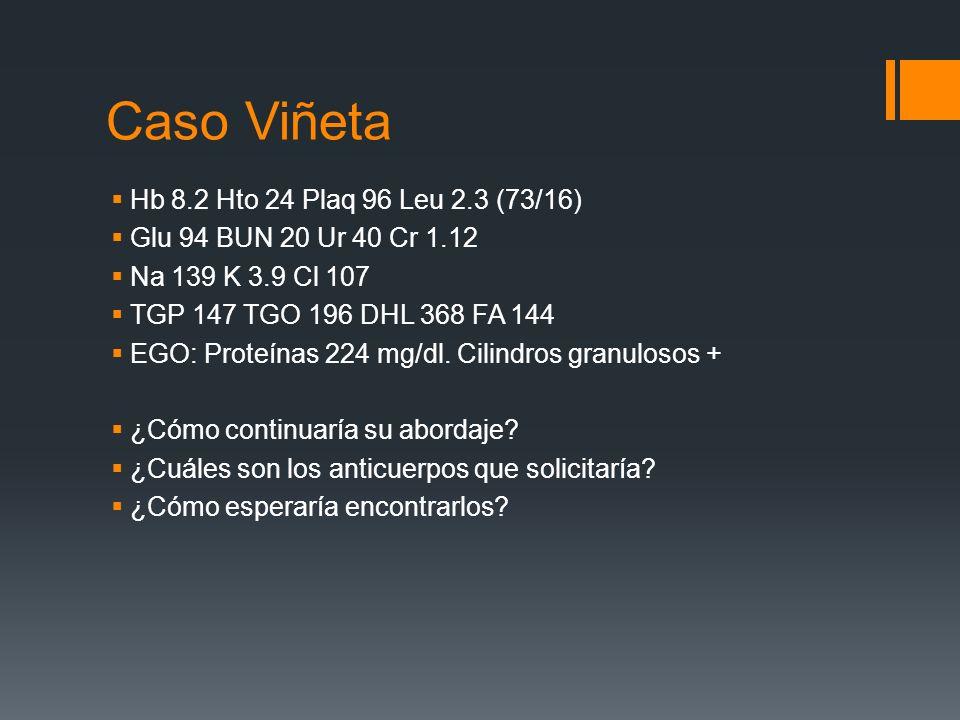 Caso Viñeta Hb 8.2 Hto 24 Plaq 96 Leu 2.3 (73/16) Glu 94 BUN 20 Ur 40 Cr 1.12 Na 139 K 3.9 Cl 107 TGP 147 TGO 196 DHL 368 FA 144 EGO: Proteínas 224 mg