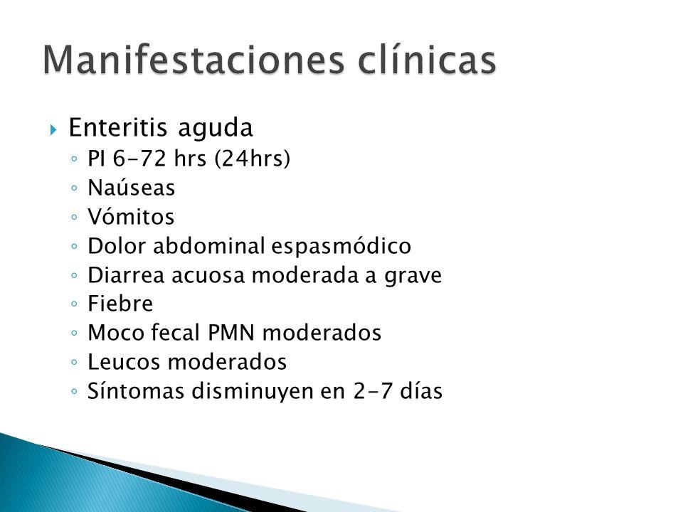 Enteritis aguda PI 6-72 hrs (24hrs) Naúseas Vómitos Dolor abdominal espasmódico Diarrea acuosa moderada a grave Fiebre Moco fecal PMN moderados Leucos