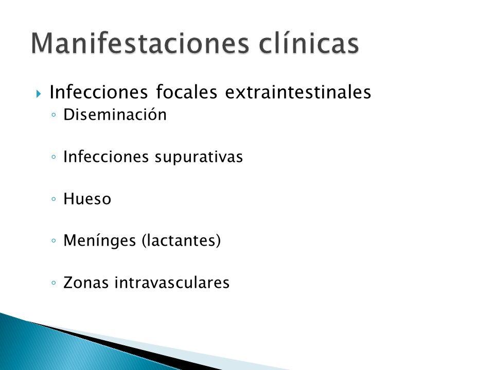 Deshidratación aguda Infecciones focales Infección crónica Choque séptico Muerte