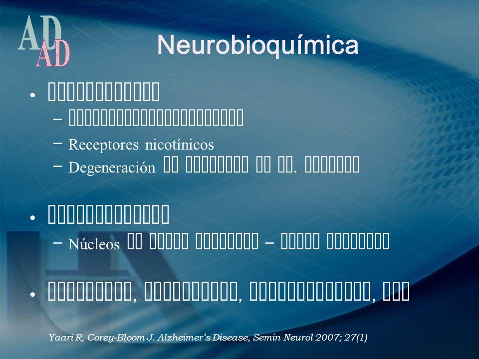 Neurobioquímica Acetilcolina – Acetilcolintransferasa – Receptores nicotínicos – Degeneración de neuronas en NB. Meynert Norepinefrina – Núcleos de ta