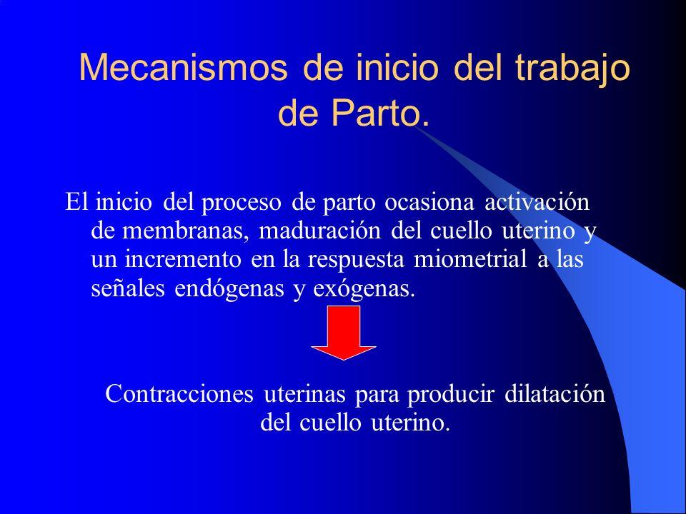 Mecanismos de inicio del trabajo de Parto. El inicio del proceso de parto ocasiona activación de membranas, maduración del cuello uterino y un increme