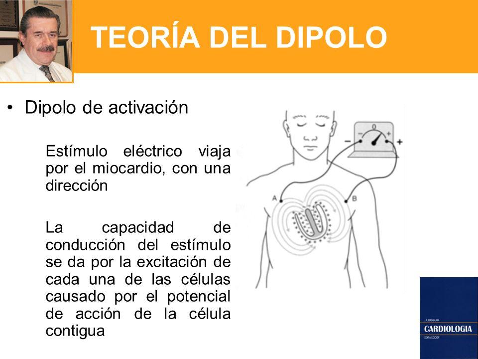 TEORÍA DEL DIPOLO Dipolo de activación Estímulo eléctrico viaja por el miocardio, con una dirección La capacidad de conducción del estímulo se da por la excitación de cada una de las células causado por el potencial de acción de la célula contigua