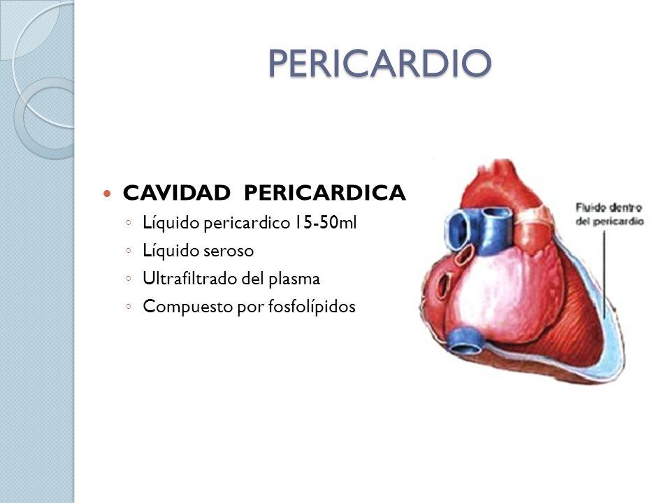 PERICARDIO CAVIDAD PERICARDICA Líquido pericardico 15-50ml Líquido seroso Ultrafiltrado del plasma Compuesto por fosfolípidos