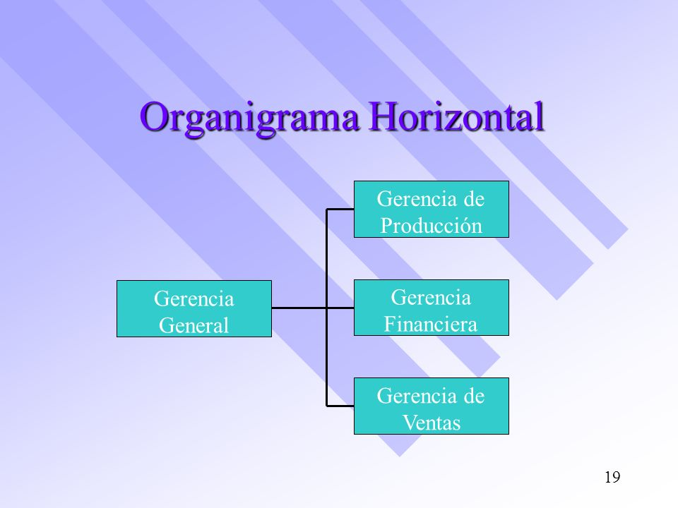 Organigrama Horizontal Gerencia de Producción Gerencia Financiera Gerencia de Ventas Gerencia General 19